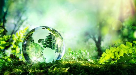 World-Environment-Day-1